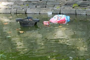 Lipsa de respect: Gunoaie aruncate in lacul cu pesti exotici din Parcul Municipal (FOTO)