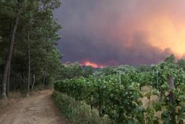 Incendiile din Portugalia: polemicile se acutizeaza, pe fondul unui fals anunt despre prabusirea unui avion Canadair