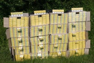 Aproximativ 18.500 pachete cu tigari de contrabanda confiscate de politistii de frontiera maramureseni