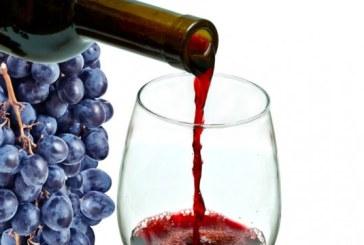 Productia de vin a Frantei va creste cu 25% in 2018, dupa un an 2017 catastrofal