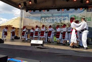 Dumbravita: Festivalul Cantecului si Dansului de pe Fisculas, la a XII-a editie. Cand va avea loc