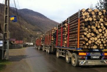 Pahontu (Romsilva): Circa un milion de mc de lemn de foc vom livra populatiei pana la finele anului