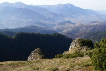 Ministrul Agriculturii anunta un program pe 10 ani pentru zona montana, din 2018