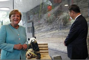 "Doi ursi panda, ""ambasadori"" ai Chinei, prezentati la Berlin, la cel mai inalt nivel"