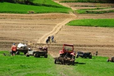 Proiect: Terenurile agricole lucrate ar putea fi scutite de la plata impozitului local