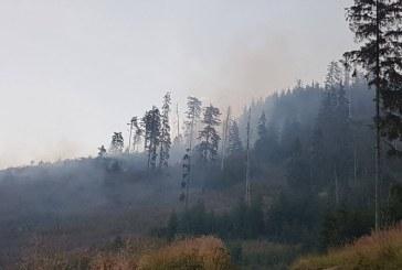 Pompierii militari maramureseni au intervenit in ultimele 24 de ore la sase situatii de urgenta