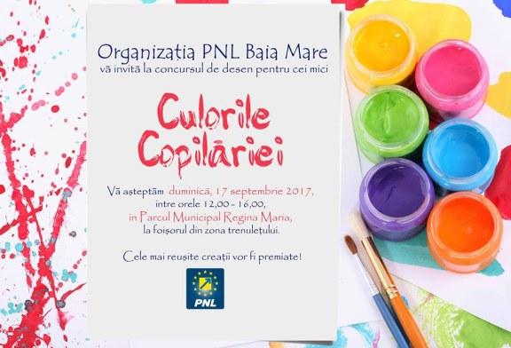 PNL Baia Mare organizeaza concursul Culorile copilariei