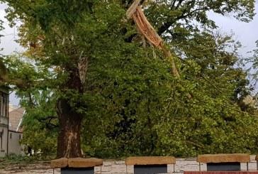 UPDATE – Maramures: Furtuna face ravagii. Bilantul pagubelor (VIDEO&FOTO)