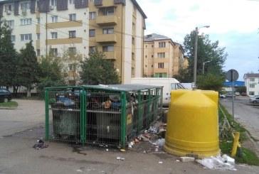 Baia Mare: Taxa de salubrizare rămâne la 7 lei/persoană