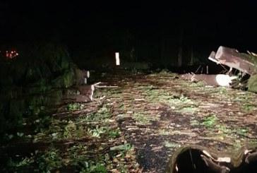 Pasul Gutai, blocat de copaci. Vezi imagini de la fata locului (VIDEO)