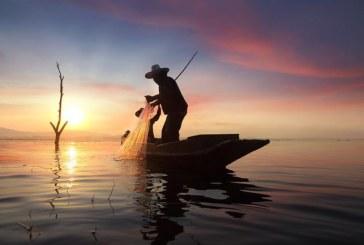 DE MÂINE – Interzis la pescuit pe râurile din Maramureș