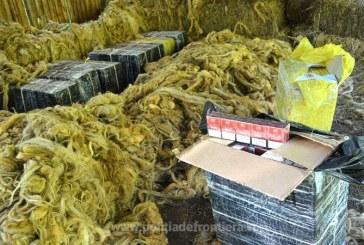 4.500 pachete cu tigari de contrabanda, descoperite intr-un saivan pentru animale