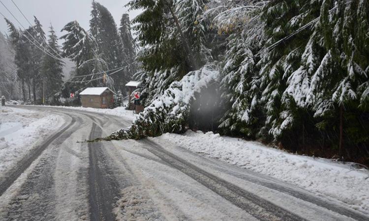 UPDATE - Iarna in Maramures: Circulatia pe DJ 184 a fost reluata (VIDEO)