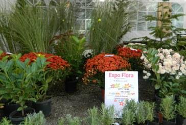 Expo – Flora: SPAU promite standuri surpriza. Baimarenii sunt invitati la deschiderea oficiala, care va fi in 27 septembrie, ora 11.00. Vezi aici, la ce ora e programata parada