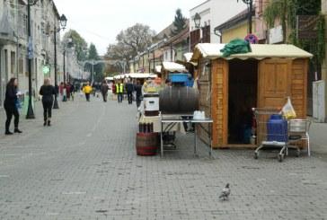 UPDATE: Sarbatoarea Castanelor, din nou in atentia Consiliului Local. Ce vor sa aprobe
