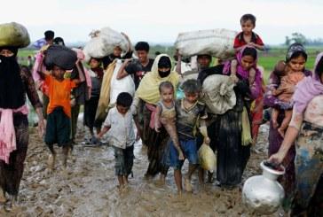 ONU face apel la strangerea a 434 de milioane de dolari pentru refugiatii rohingya