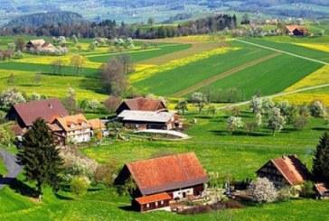 Studiu: Romania rurala, cu peste 10.000 de sate si 9 milioane de locuitori, are un potential de dezvoltare insuficient explorat