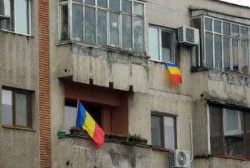 Ziua Nationala, in Baia Mare: Cu tricolorul la fereastra si pe masina (FOTO)