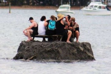 Noua Zeelanda: Cativa localnici si-au facut o insula ca sa scape de o interdictie de consum de alcool in public