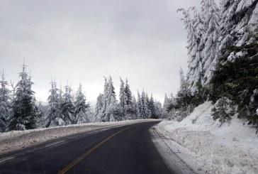 Meteo: Ceata in Pasul Prislop. Temperaturi negative, astazi, de -6 grade C. La Borsa si Ocna Sugatag -4 grade C, respectiv -3 grade C la Cavnic