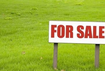 Vânzare teren în Cărbunar – Extras publicație imobiliară, din data de 29. 07. 2020