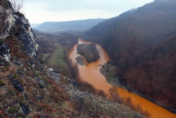 Imaginile dezastrului: Accidentul ecologic a lovit si Rezervatia Naturala Cheile Lapusului (FOTO)