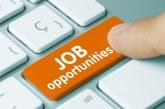 Aproape 13.000 de persoane şi-au găsit locuri de muncă în ianuarie prin intermediul ANOFM