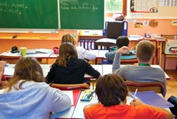 Copiii bilingvi nu sunt mai inteligenti decat cei monolingvi