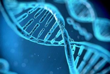 A fost stabilit ADN-ul asasinului fetitei din Baia Mare