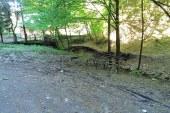 Reteaua de alimentare cu energie electrica de pe Valea Usturoi va fi modernizata