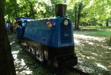 Imaginea zilei: Trenuletul din Parc