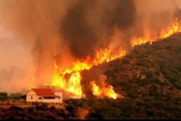 Incendiile devastatoare din Grecia au facut cel putin 80 de victime; multe persoane sunt date disparute
