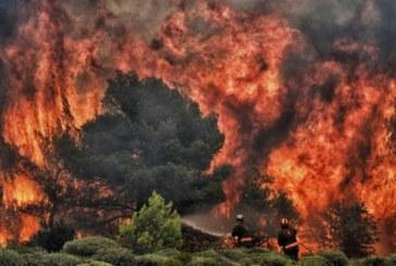 Bilantul incendiilor devastatoare din Grecia a ajuns la 88 de morti