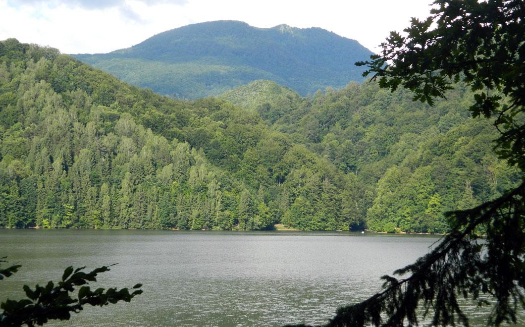 Imaginea zilei: Barajul Firiza