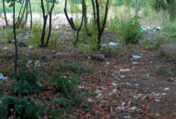 Din oras: Mormane de gunoaie pe o strada din Baia Mare (FOTO)