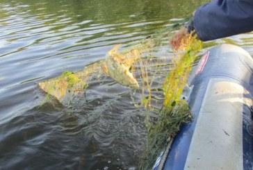Indonezia a scufundat 120 de ambarcatiuni straine intr-o campanie de combatere a pescuitului ilegal