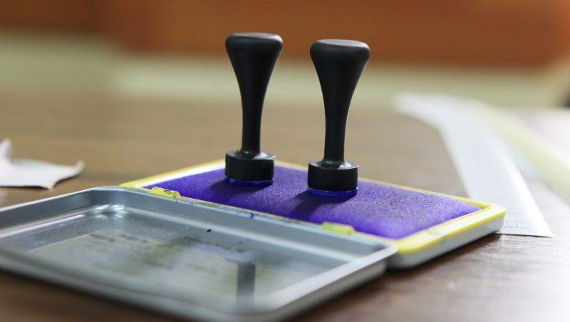 Buica (AEP): Datele colectate de la cetatenii cu drept de vot in strainatate vor fi utilizate numai in procesul electoral