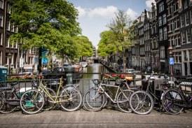 Expert olandez in managementul traficului: In Amsterdam, 42% din populatie foloseste bicicleta; e importanta infrastructura propice