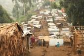 Cincisprezece milioane de oameni din RD Congo se confrunta cu foametea