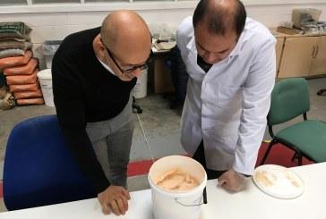 Lancaster: Morcovii  ar putea fi folositi la fabricarea betonului