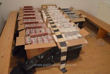 """Un nou episod din serialul """"Contrabanda"""": Peste 11.200 de pachete cu tigari confiscate in Maramures"""