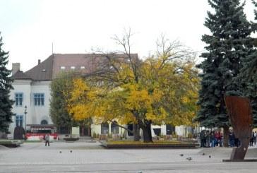Imaginea zilei: Culorile toamnei in Centrul Vechi