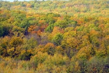 Maramures: Prognoza meteo pentru perioada 14 – 27 octombrie