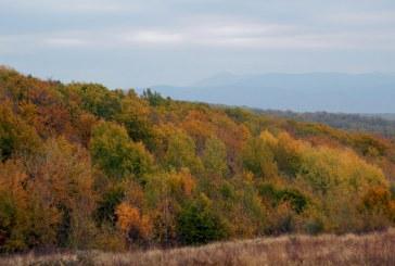 Toamna in Maramures: Peisaje de pe dealurile de la Farcasa (FOTO)