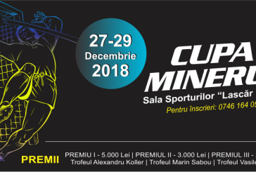 Fotbal: Cand va avea loc Cupa Minerul 2018