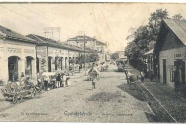 Maramures: Strada Mare din Alba Iulia strabatuta, acum un secol, de carute si targoveti.100 de maramureseni vor merge cu zece carute la Cetatea Unirii