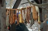 Carne furată dintr-o anexă gospodărească din Coltău