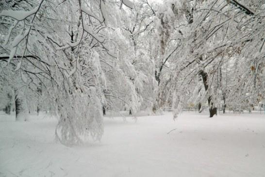 Meteo: Temperaturi minime cuprinse intre -2 si -6 grade C, in Maramures. La Cavnic zapada masoara pana la 112 cm