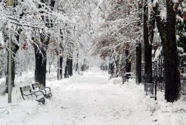 METEO Maramures: Vremea se mai incalzeste