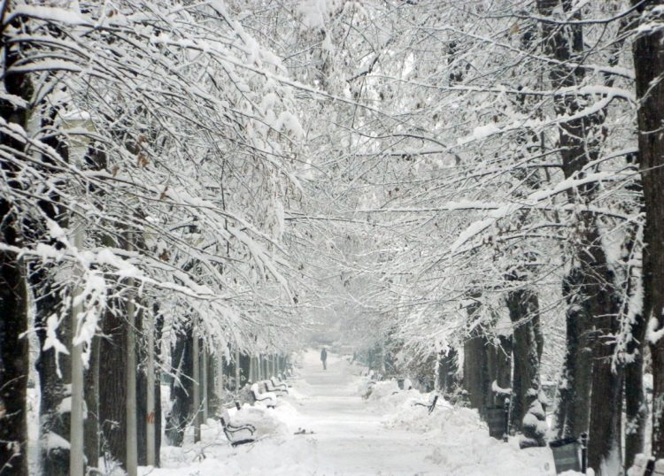 Meteo: Astazi va ninge pe arii extinse. Temperaturi: -7 grade C in Pasul Gutai, -6 grade C la Borsa, Cavnic, Ocna Sugatag, Petrova, Viseu de Sus, -5 grade C la Targu Lapus